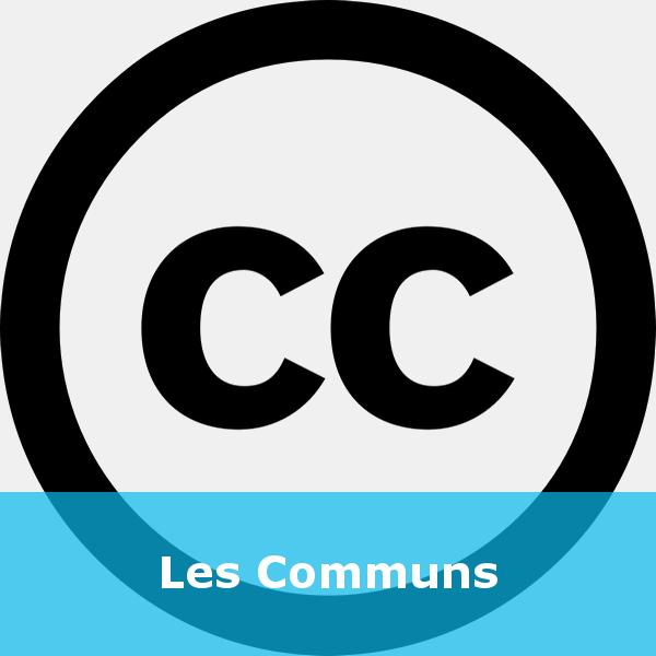 Capsule - Les Communs