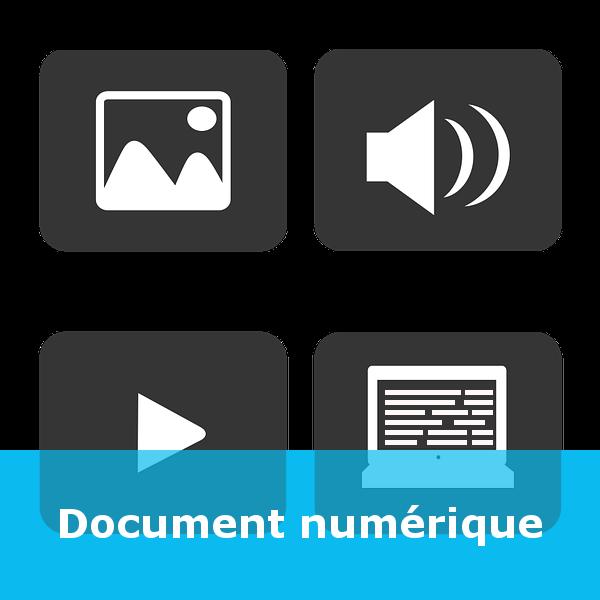 Capsule - Document numérique